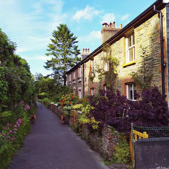 Casas rurales camino inglés