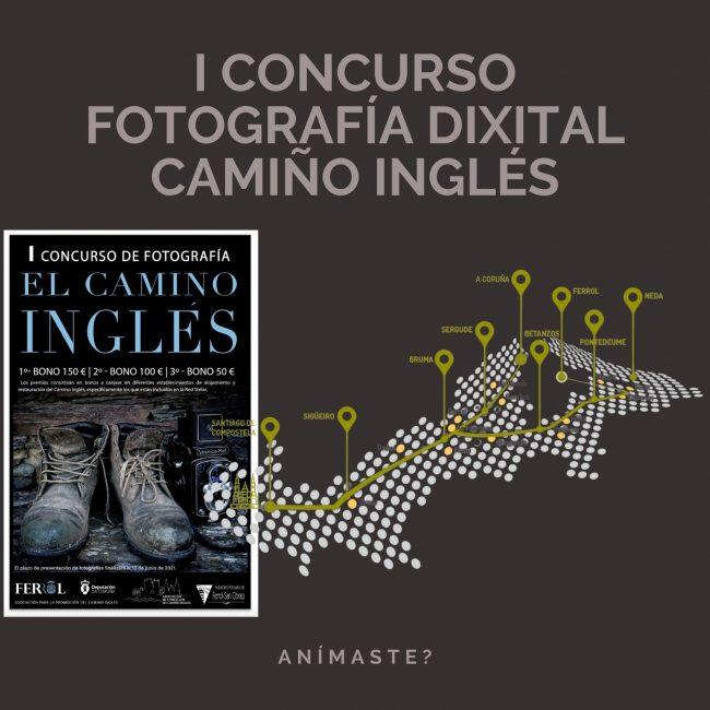 Concurso fotografia camino ingles
